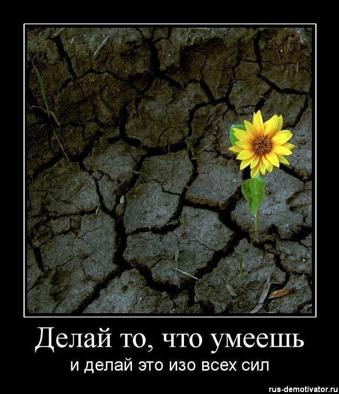 http://cs5631.vkontakte.ru/u41307074/101053298/y_4ccac8ab.jpg