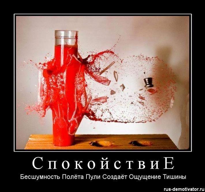 http://cs5631.vkontakte.ru/u41307074/101053298/y_621a25b0.jpg